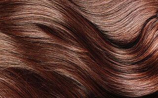 Image: Frisyrene som gir fyldigere hår