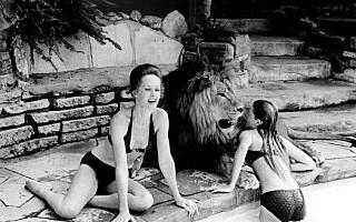 Image: - Vi var ufattelig dumme som lot løven bo i huset med oss
