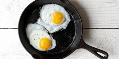 Image: Forskning friskmelder egget
